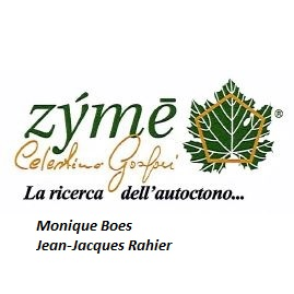 Zyme by Rahier